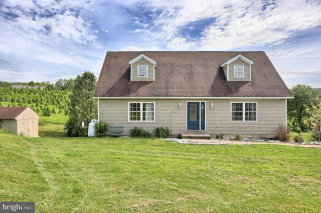 25 Richwine Road, MARYSVILLE, PA 17053 (#PAPY100882) :: The Heather Neidlinger Team With Berkshire Hathaway HomeServices Homesale Realty