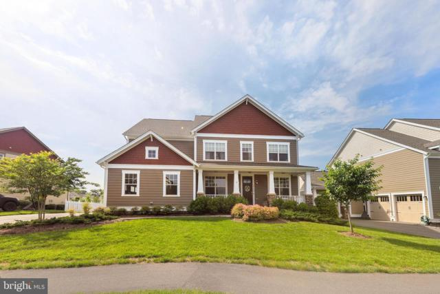 24624 Lavender Grove, ALDIE, VA 20105 (#VALO385004) :: ExecuHome Realty