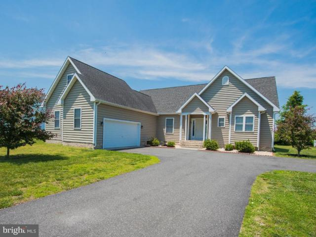 112 Nina Lane, FRUITLAND, MD 21826 (#MDWC103462) :: Great Falls Great Homes