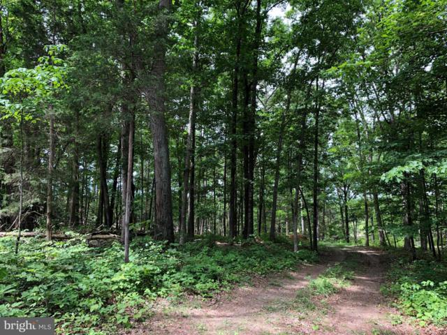 Lot 21 Creek Bend Court, STEPHENS CITY, VA 22655 (#VAWR136918) :: Peter Knapp Realty Group