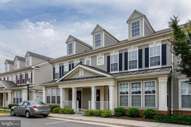 43067 Zander Terrace, ASHBURN, VA 20147 (#VALO385032) :: The Greg Wells Team