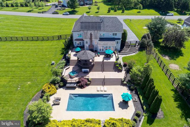 19343 Emerald Park Drive, LEESBURG, VA 20175 (#VALO385034) :: The Piano Home Group