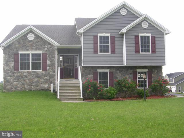 1452 Millennium Drive, CHAMBERSBURG, PA 17202 (#PAFL165868) :: The Joy Daniels Real Estate Group