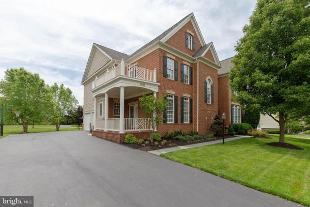 19448 Mill Dam Place, LEESBURG, VA 20176 (#VALO385056) :: The Piano Home Group