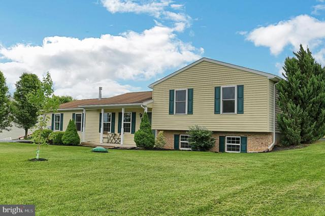 12114 Skyhawk Drive, WAYNESBORO, PA 17268 (#PAFL165880) :: Liz Hamberger Real Estate Team of KW Keystone Realty