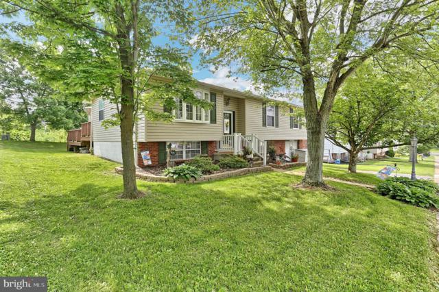 110 Delwood Drive, DOVER, PA 17315 (#PAYK117458) :: Flinchbaugh & Associates