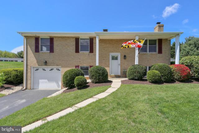 3896 Maryland Manor Drive, MONROVIA, MD 21770 (#MDFR247104) :: Jim Bass Group of Real Estate Teams, LLC