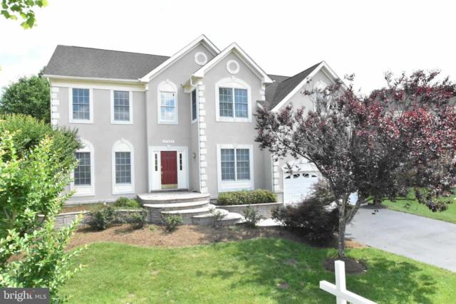 47426 Riverbank Forest Place, STERLING, VA 20165 (#VALO385112) :: Great Falls Great Homes