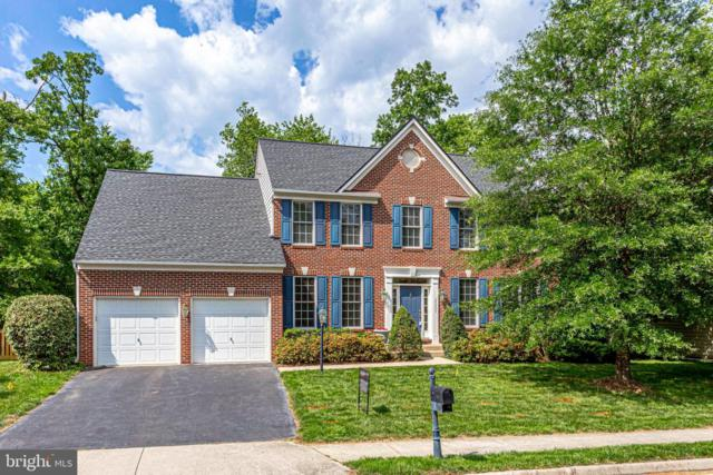 24809 High Plateau Court, ALDIE, VA 20105 (#VALO385120) :: Samantha Bendigo
