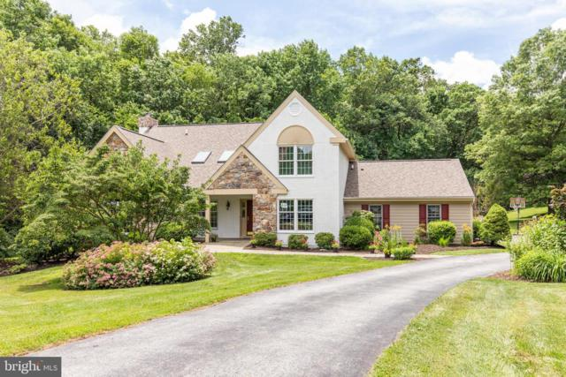 336 Valley View Lane, CHESTER SPRINGS, PA 19425 (#PACT479830) :: Jim Bass Group of Real Estate Teams, LLC
