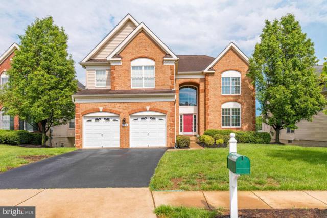 43898 Camellia Street, ASHBURN, VA 20147 (#VALO385136) :: Colgan Real Estate