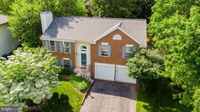 905 Sweet Gum Court, FREDERICK, MD 21701 (#MDFR247124) :: Pearson Smith Realty