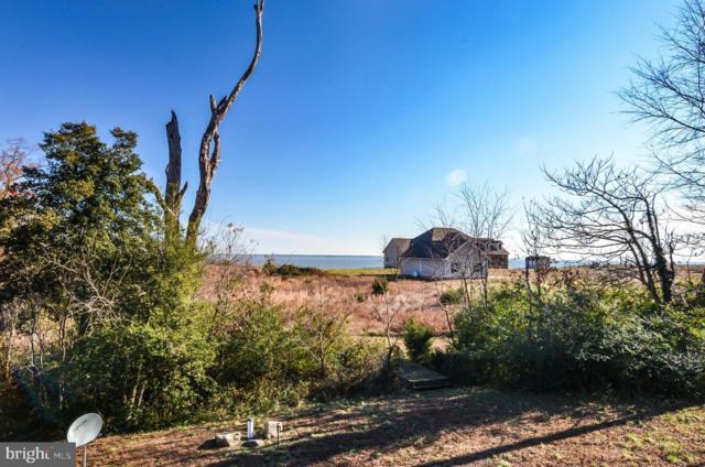 8777 Sandy Beach Lane, KING GEORGE, VA 22485 (#VAKG117528) :: The Licata Group/Keller Williams Realty