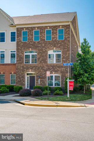 24641 Red Lake Terrace, STERLING, VA 20166 (#VALO385196) :: EXP Realty
