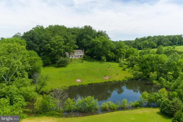 10983 Lees Mill, REMINGTON, VA 22734 (#VAFQ160500) :: RE/MAX Plus