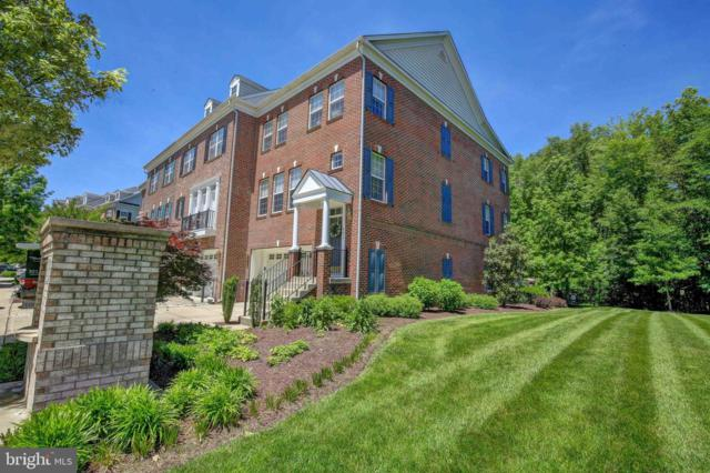 423 Penwood Drive, EDGEWATER, MD 21037 (#MDAA401244) :: Pearson Smith Realty