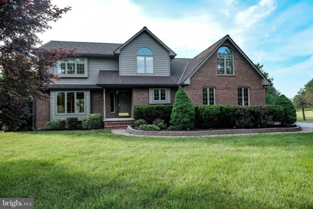 392 Milldale Valley Drive, FRONT ROYAL, VA 22630 (#VAWR136942) :: AJ Team Realty
