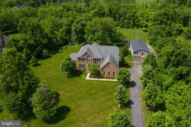 17301 Roundmont Place, ROUND HILL, VA 20141 (#VALO385258) :: AJ Team Realty