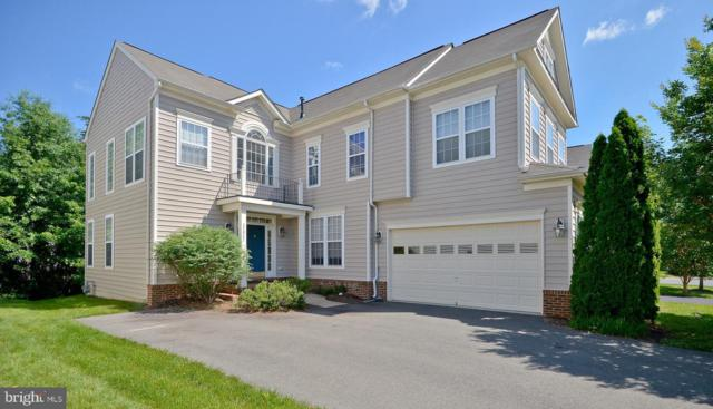 42922 Park Brooke Court, BROADLANDS, VA 20148 (#VALO385284) :: The Greg Wells Team