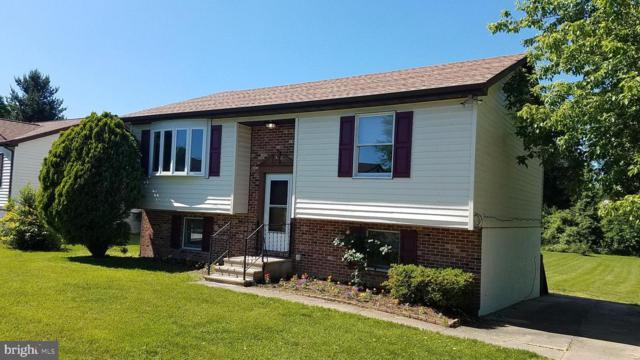 105 Chalice Drive, ELKTON, MD 21921 (#MDCC164372) :: The Daniel Register Group
