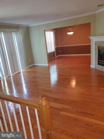 8683 Side Saddle Court, RANDALLSTOWN, MD 21133 (#MDBC459562) :: Keller Williams Pat Hiban Real Estate Group