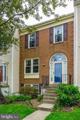 6035 Joust Lane, ALEXANDRIA, VA 22315 (#VAFX1065438) :: Browning Homes Group