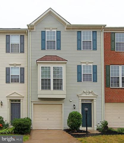25334 Sweetness Terrace, ALDIE, VA 20105 (#VALO385388) :: The Greg Wells Team