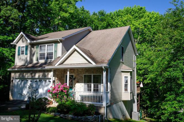 113 Seneca Terrace, NORTH EAST, MD 21901 (#MDCC164400) :: AJ Team Realty
