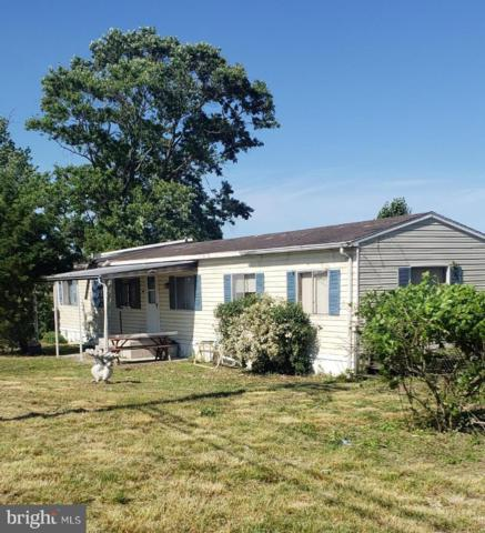 36416 Poplar Neck Road, WILLARDS, MD 21874 (#MDWC103526) :: Brandon Brittingham's Team