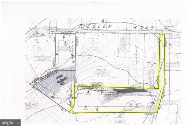 0 Ziegler Road, PENNSBURG, PA 18073 (#PAMC611606) :: Bob Lucido Team of Keller Williams Integrity