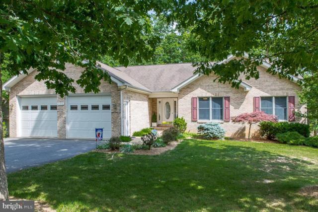 128 Bobcat Lane, MC GAHEYSVILLE, VA 22840 (#VARO100844) :: Browning Homes Group