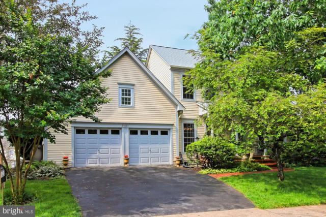 21021 Fowlers Mill Circle, ASHBURN, VA 20147 (#VALO385678) :: The Greg Wells Team