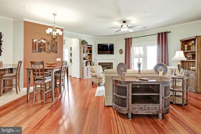 43144 Sunderland Terrace #206, BROADLANDS, VA 20148 (#VALO385730) :: The Greg Wells Team