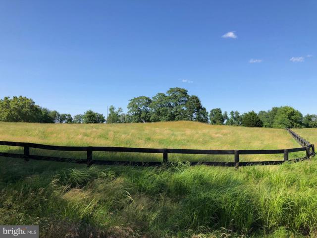 22542 Sam Fred Road, MIDDLEBURG, VA 20117 (#VALO385734) :: LoCoMusings