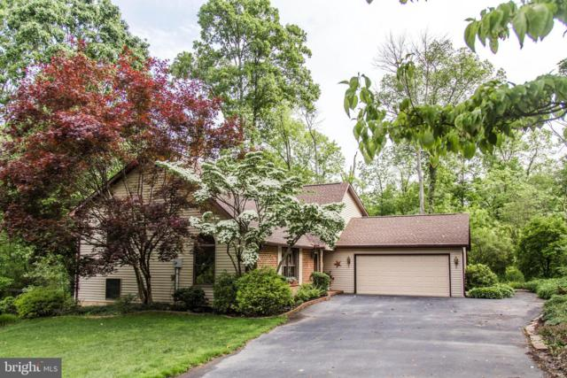 35 Mountain View Court, WELLSVILLE, PA 17365 (#PAYK117864) :: The Joy Daniels Real Estate Group