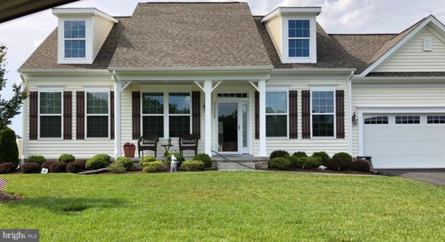 38537 Blue Hen Drive, SELBYVILLE, DE 19975 (#DESU141430) :: Blackwell Real Estate