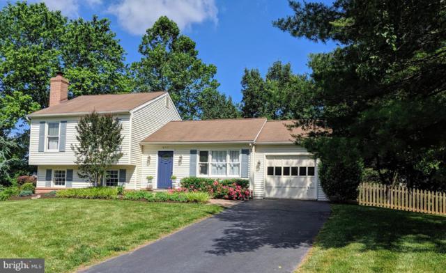 10171 Yorktown Way, GREAT FALLS, VA 22066 (#VALO385796) :: Browning Homes Group