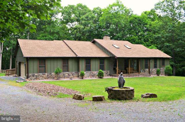 978 Sideling Mountain Trail, GREAT CACAPON, WV 25422 (#WVMO115414) :: The Daniel Register Group