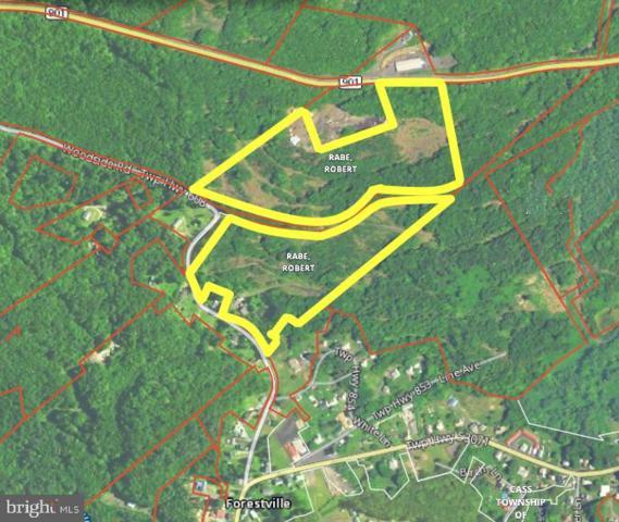 Woodside Road, POTTSVILLE, PA 17901 (#PASK126122) :: The Mark McGuire Team - Keller Williams
