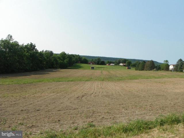 NS Webster School Road, GRANTVILLE, PA 17028 (#PALN107240) :: Liz Hamberger Real Estate Team of KW Keystone Realty