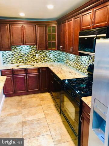 5310 Delmar Drive, CLIFTON HEIGHTS, PA 19018 (#PADE492892) :: Dougherty Group