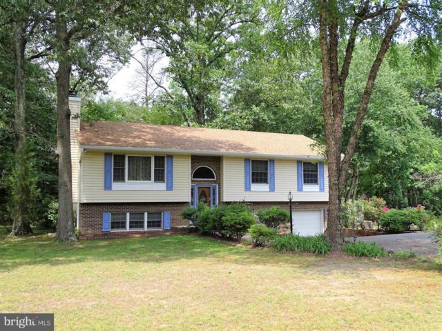 8212 Edwin Raynor Boulevard, PASADENA, MD 21122 (#MDAA402058) :: Blackwell Real Estate