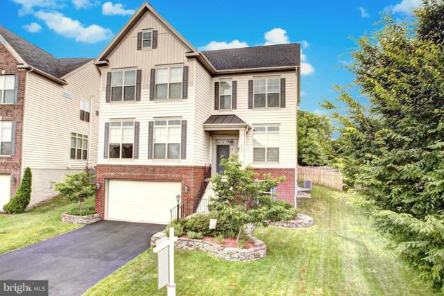 42735 Macauley Place, ASHBURN, VA 20148 (#VALO385918) :: The Greg Wells Team