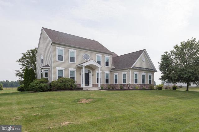 136 Laks Drive, MIDDLETOWN, DE 19709 (#DENC479710) :: Brandon Brittingham's Team