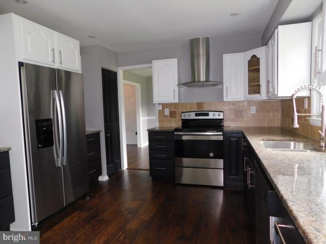 11504 Blue Flame Court, CLARKSVILLE, MD 21029 (#MDHW264900) :: The Sebeck Team of RE/MAX Preferred