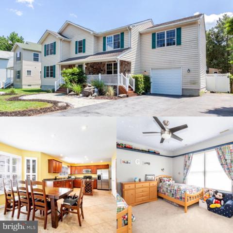 833 Selby Boulevard, EDGEWATER, MD 21037 (#MDAA402154) :: Blackwell Real Estate