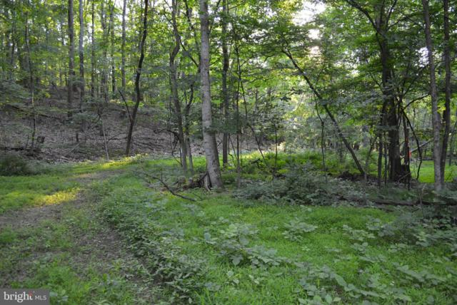 LOT 16 Unknown, CROSS JUNCTION, VA 22625 (#VAFV151074) :: Network Realty Group