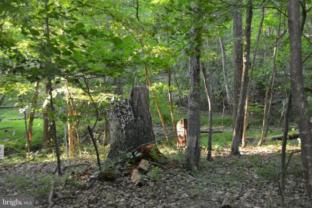 LOT 13 Unknown, CROSS JUNCTION, VA 22625 (#VAFV151080) :: Network Realty Group