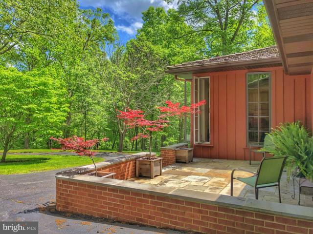 108 Grand View Road, WASHINGTON, VA 22747 (#VARP106694) :: Viva the Life Properties