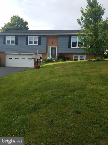 1584 Hossler Road, MANHEIM, PA 17545 (#PALA133836) :: The Joy Daniels Real Estate Group
